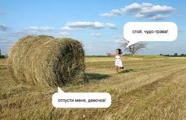 стой картинки: